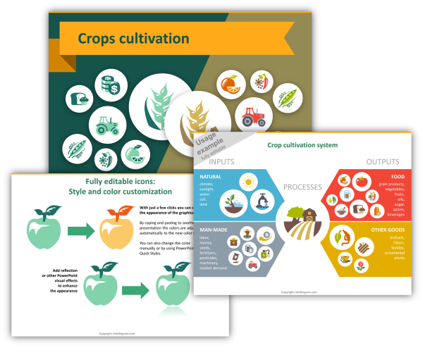 crops food icons ppt_overview