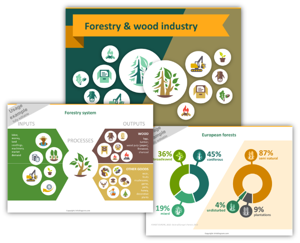 forestry wood industry ppt