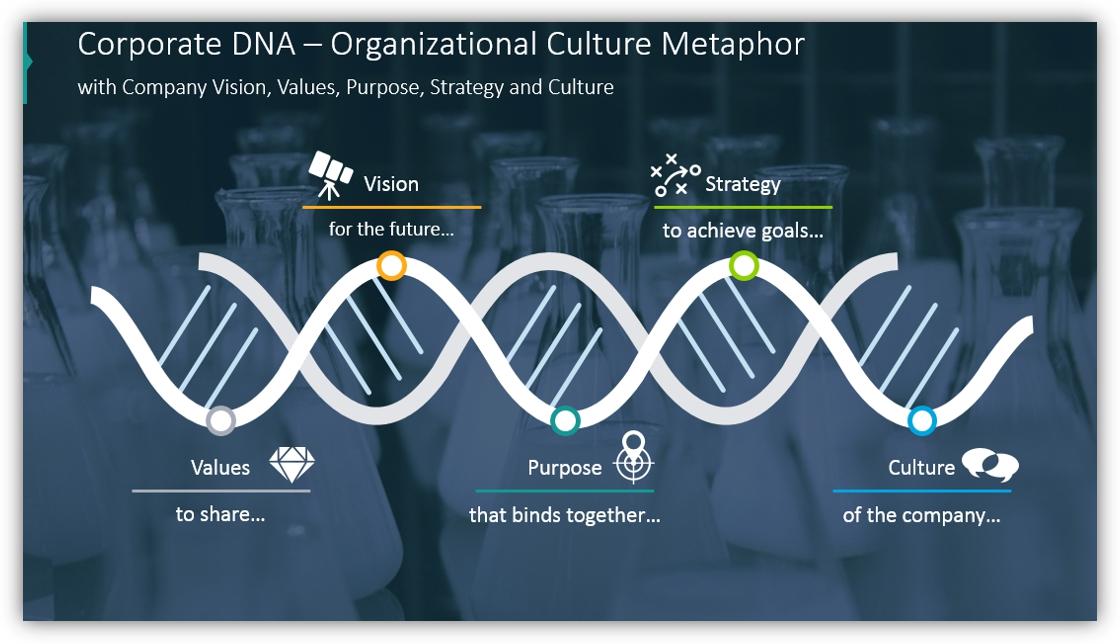 DNA diagram Organizational Culture