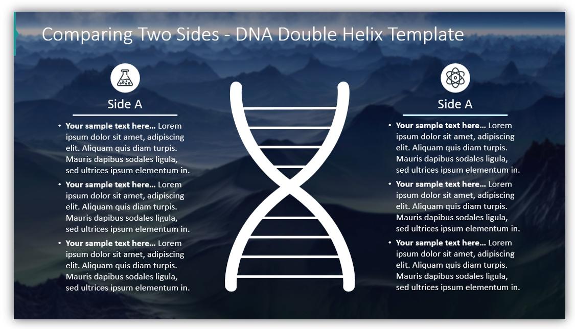 DNA diagram DNA Double Helix Templat