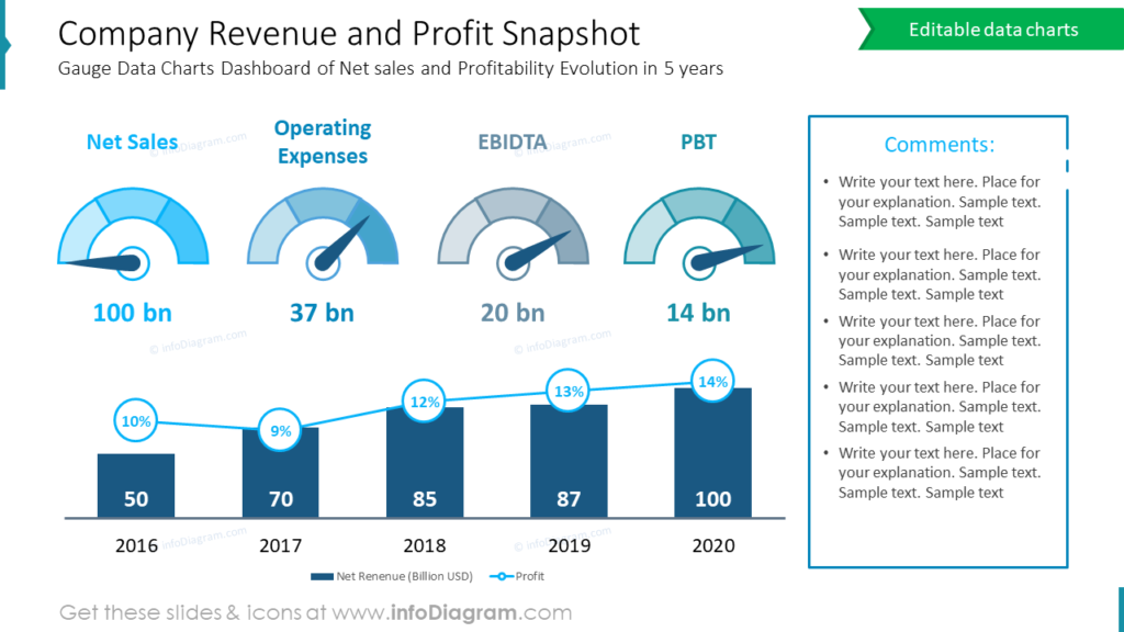 Company Revenue and Profit Snapshot annual report review ppt