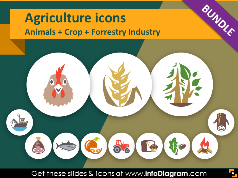 Food Presentation Icons : For Presenting Health, Green Agriculture, Eco-Living & Wood Production, and more!